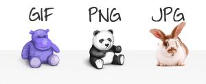 Wordpress .jpg, .gif, .svg or .png?