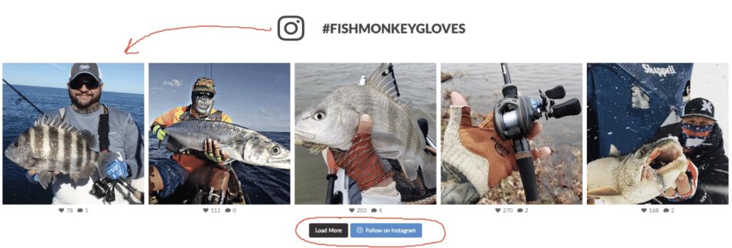 Instagram WordPress Widget Example