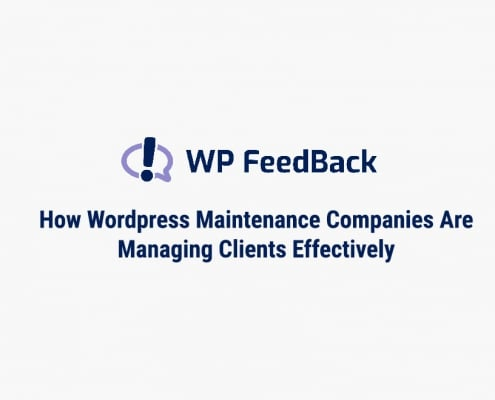Wordpress Plugin WPFeedback