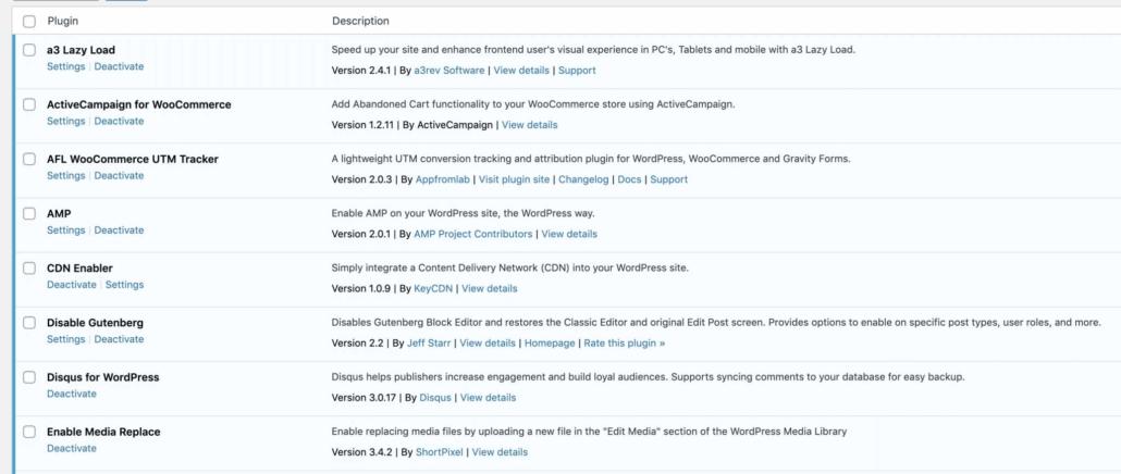 WordPress 5.5 Plugin Auto Update
