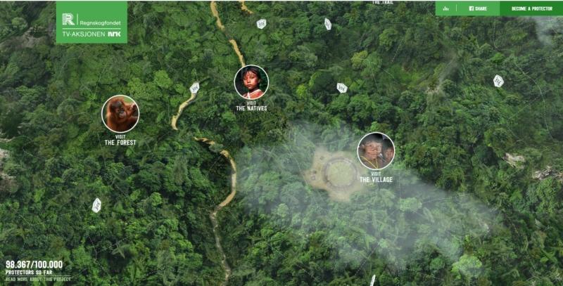 rainforest.arkivert Best Websign Design