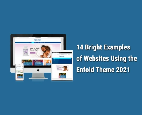 The best examples of WordPress websites using the Enfold theme
