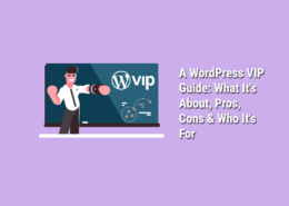 A-WordPress-VIP-Guide